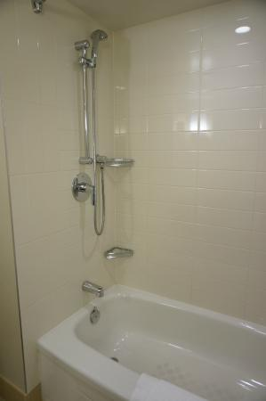 Hand Held Shower Head With Bathtub Picture Of Delta Hotels By