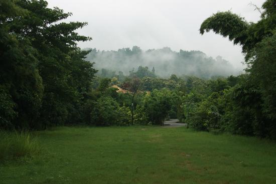 Aahana the Corbett Wilderness: Aahana from the gate