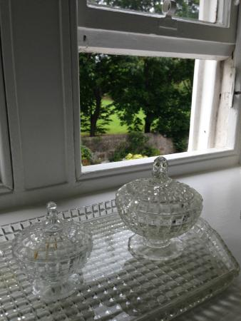 Botanics Bed & Breakfast : View from the bedroom