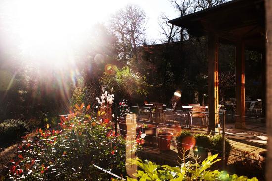 Jesmond Dene House: Garden