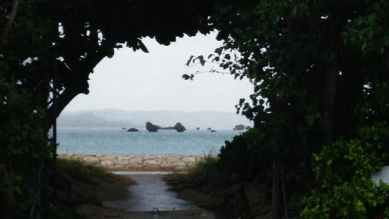 木の額縁から見える海 - Picture of Hamahiga-jima Island, Uruma ...