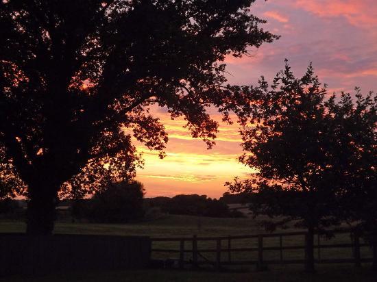 Broadgate Farm Cottages: sunset