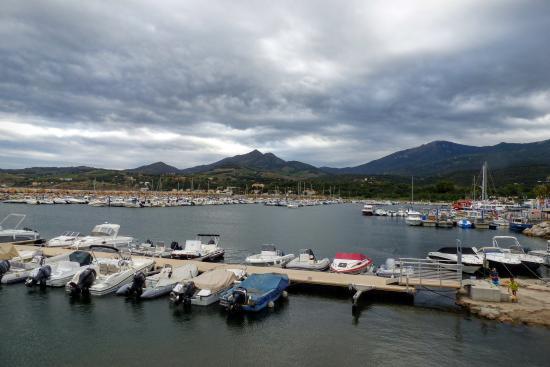 Port argel s picture of argeles sur mer pyrenees orientales tripadvisor - Capitainerie port argeles sur mer ...