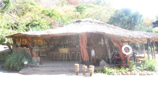 Monkey Bay Mufasa Backpacker Lodges: the bar