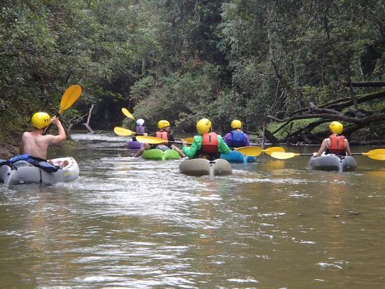 Tully, Australië: Kayak tour