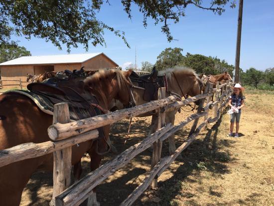 Twin Elm Guest Ranch: photo0.jpg