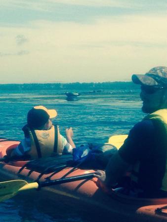 Sunrise Canoe and Kayak: Summer kayak tours