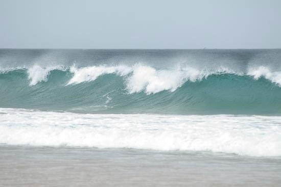 International Surf School