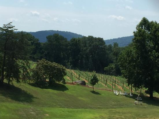 Middleburg Country Inn: Naked Mountain Vineyard
