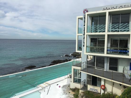 icebergs and pool - picture of icebergs dining room & bar, bondi