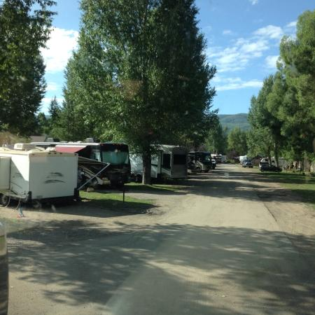 Steamboat Campground: Back side of site area