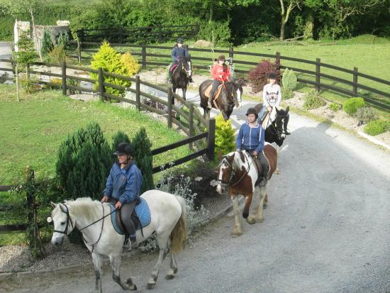 Boskill Equestrian Centre