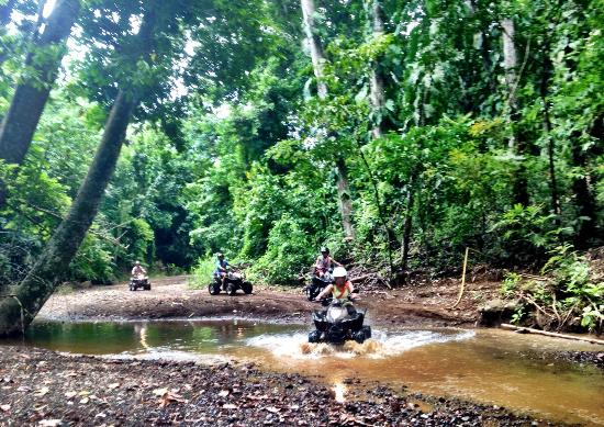 AXR An Xtreme Rider: Another day in paradise! Another adventure into the Rainforest!