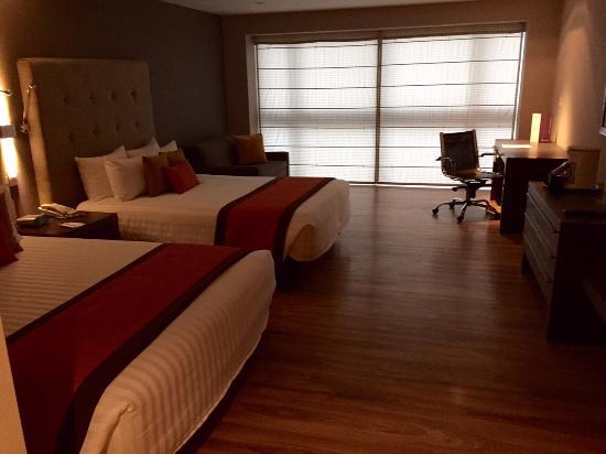 Hotel El Diplomatico: Habitación