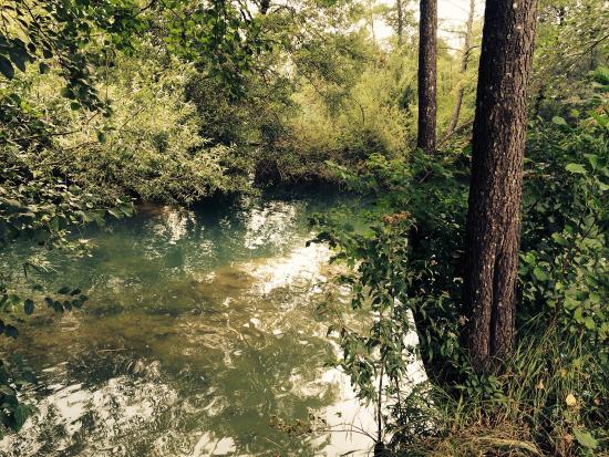 Duga Resa, Croacia: The river