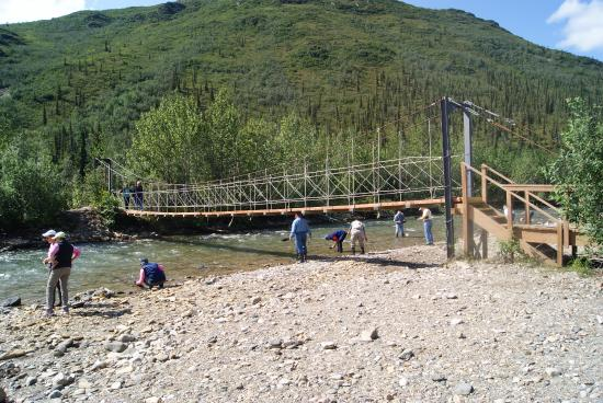 Denali Backcountry Lodge: Footbridge