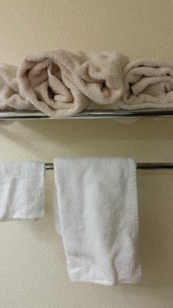 Best Western Hampton Coliseum Inn: gross replacement towels
