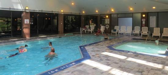 Hilton Mississauga/Meadowvale : Pool, Hilton Meadowvale Hotel, photo by Mike Keenan
