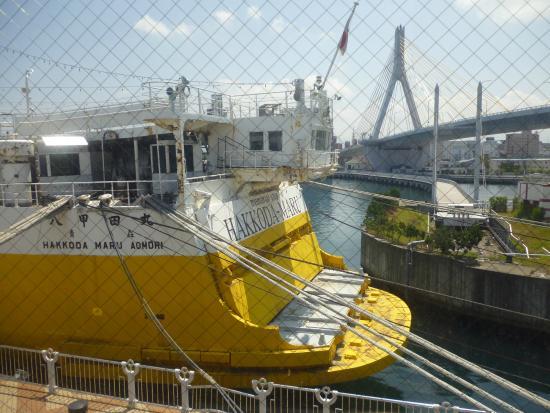 เรือ Hakodamaru - Picture of Seikan Ferry Memorial Ship Hakkodamaru, Aomori -...