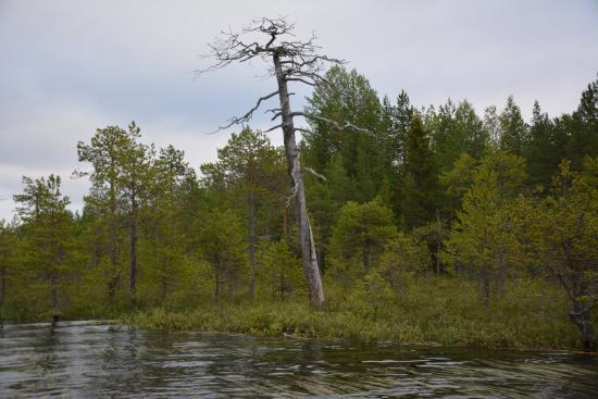 Lake Panovo