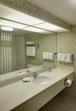 Hampton Inn Hartford / Airport: Standard Bathroom