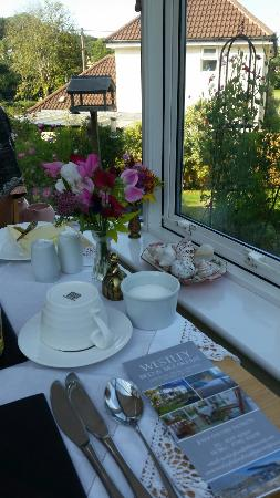 Uplyme, UK: Awesome  place for breakfast. ..conservatory with a view...