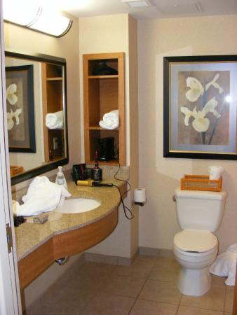 Hollywood Casino Bangor Hotel: Bathroom