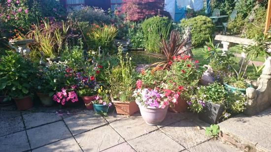 Park View: Beautiful, lovingly kept garden