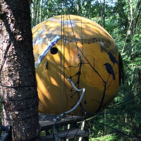 Free Spirit Spheres: photo0.jpg