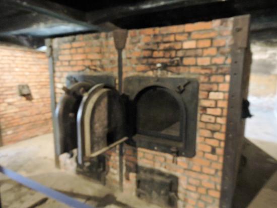 Creamatorium - Picture of Auschwitz-Birkenau State Museum ...