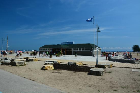 The Beach Village Beaches