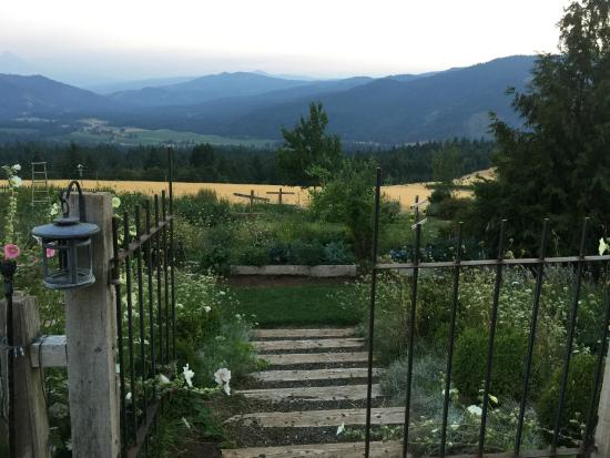 Husum Highlands Bed and Breakfast: Back gardens, field and mountain view