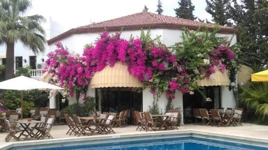 Hotel Karia Princess: Otel anilarimiz
