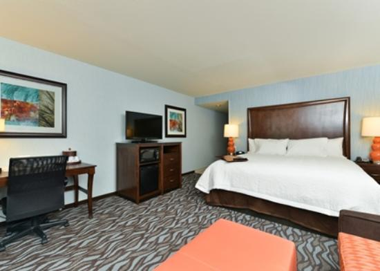 Hampton Inn Corning/Painted Post : King room