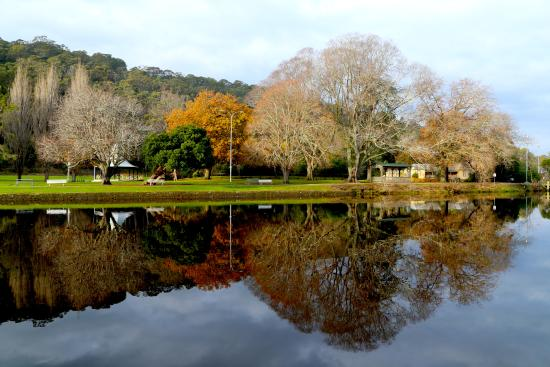 Latrobe, Australia: Winter Reflection