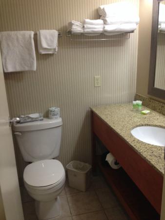 Best Western Truro - Glengarry: Super tiny bathroom
