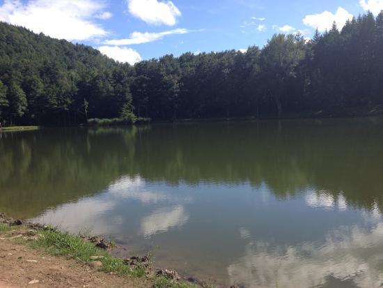 Lago pontini photo de ristorante lago dei pontini bagno di romagna tripadvisor - Ristorante del lago bagno di romagna ...