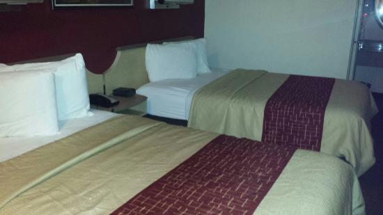 Red Roof Inn Orlando   International Drive/Convention Center
