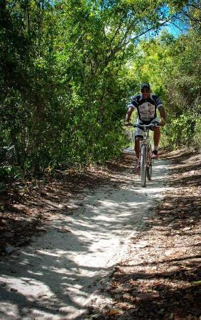 Culebike Adventure: shady easy to ride back roads
