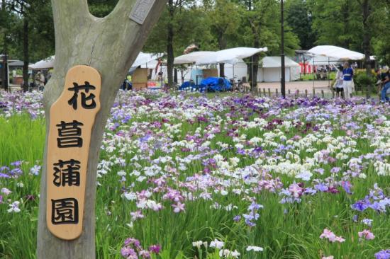 水 元 公園
