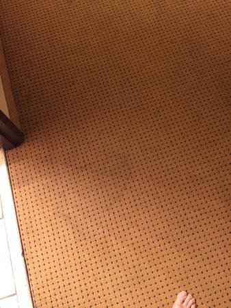 Ramada by Wyndham Waterloo Hotel and Convention Center : photo1.jpg