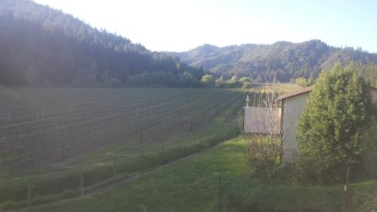 West Sonoma Inn & Spa: Vineyard View