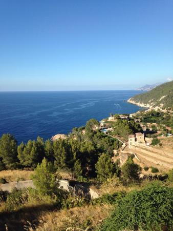 Agroturismo S'Olivar: La piscine est splendide. Avec une voiture les plus belles plages sont faciles d'accès (compter