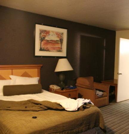 Travel Inn & Suites: Cama grande