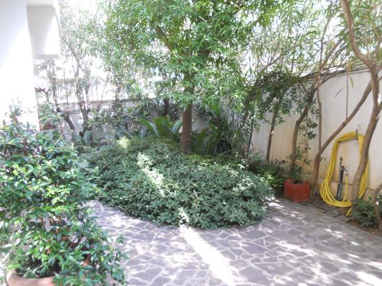 Gardenia Hotel : giardino