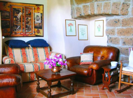 Torre Avellana: salotto