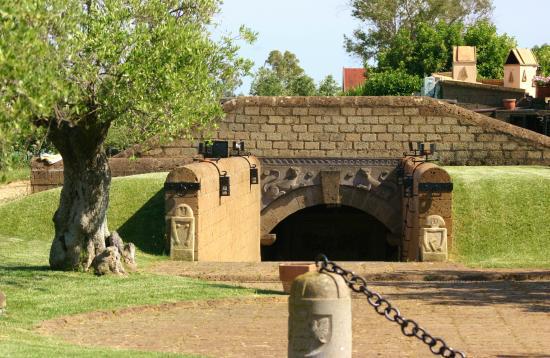 Etruscaia