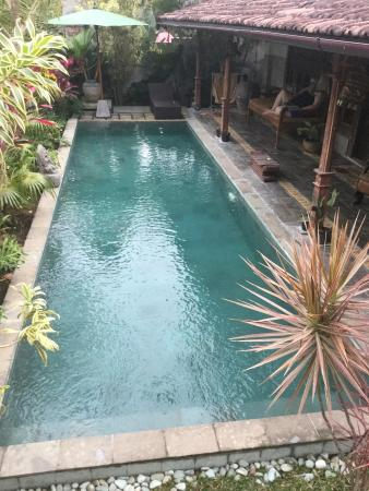 Ubud Syailendra Villas : The pool