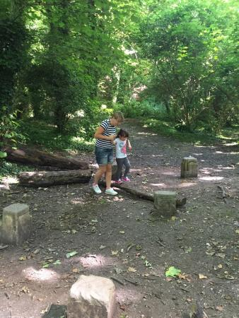 Humber Bridge Country Park: Great day