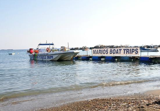 Mario's Cave and Turtle Boat Trips: Marios' boat